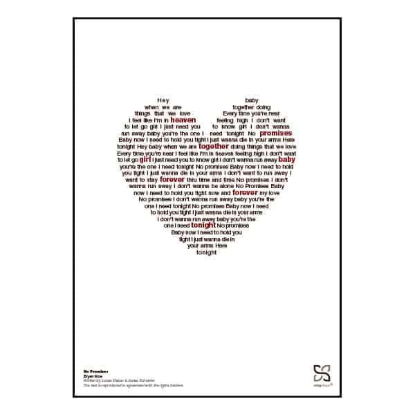 """Plakat med sangteksten til """"No Promises"""" af Bryan Rice."""